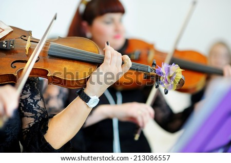 Two musicians playing violins on a wedding reception - stock photo