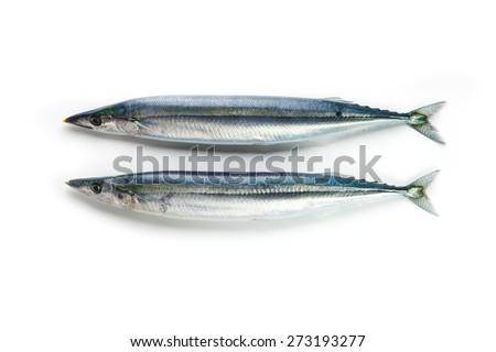 Two nice shaped Pacific saury (Cololabis saira / mackerel pike / sanma ) isolated on white.  - stock photo