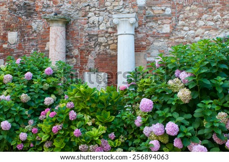 Two of the Roman style columns in the external courtyard in Vicenza - stock photo