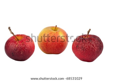 Two old and one fresh apple isolated on white background - stock photo