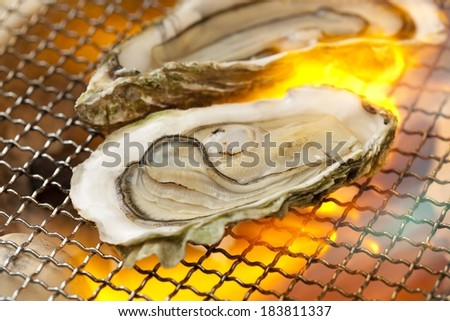 Two open shell oysters sit atop a hot mesh grill. - stock photo