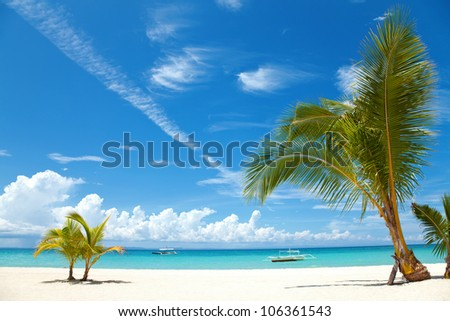 Two palm trees on a beach in Bantayan island, Philippines - stock photo