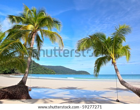 Two palm trees on clear sand near the sea under blue sky - stock photo