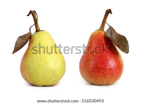 two pears with leaf isolated on white background - stock photo