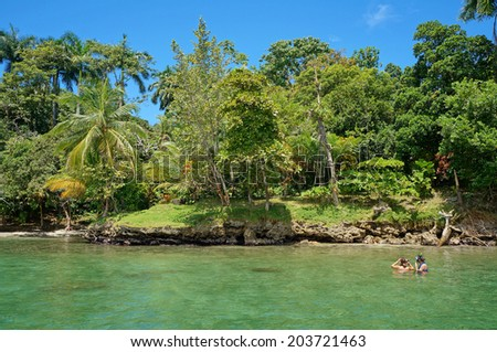 Two people snorkel in the sea and looking tropical shore with lush vegetation, Caribbean, Bocas del Toro, Panama - stock photo