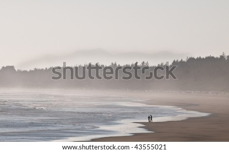 Two people walking on the beach at sunset - stock photo