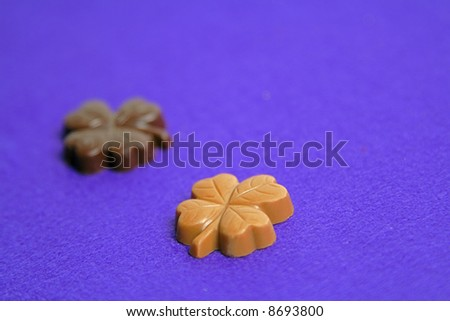 Two piece of clover shape chocolates on a violet soft background.Extremely selective focus on a light borwn piece. - stock photo