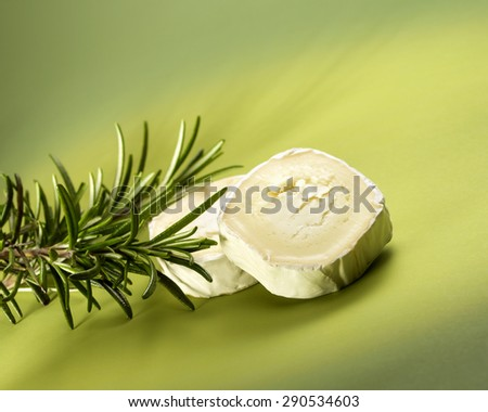 Two pieces of cheese and aromatic plant on green background - stock photo