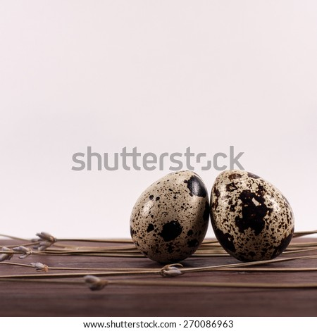 Two quail eggs on brown wooden table  and dry lavender. - stock photo