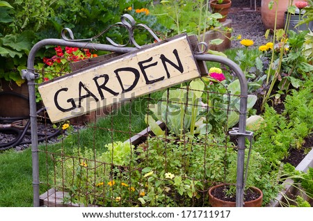 Two raised garden beds filled with flowers and vegetables are nestled in small backyard. A delightful rustic sign hanging jauntily on a recycled gate adds an artistic accent. - stock photo