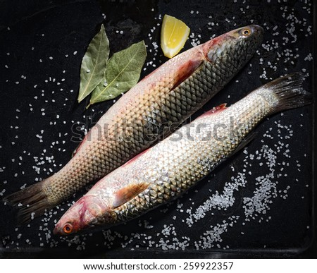 Two raw fish with lemon and salt on a black background - stock photo