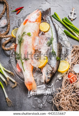Two raw  whole fish with fresh ingredients for tasty and healthy cooking. Gold Rainbow trout on concrete stone background with ice cubes and fishing net, top view. Fish dishes preparation. - stock photo
