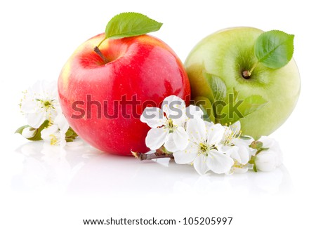 Two red and green apples with leaves and flowers on a white background - stock photo