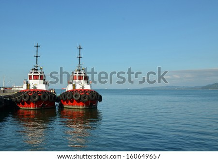 Two red ship on the background of the sea  - stock photo