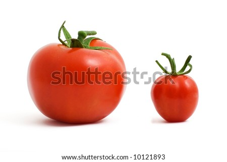 Two red tomatoes, small and big. - stock photo