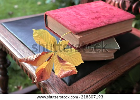 Two retro books laid on the old chair with yellow leaf as a bookmark, concept of knowledge, outdoor shot - stock photo