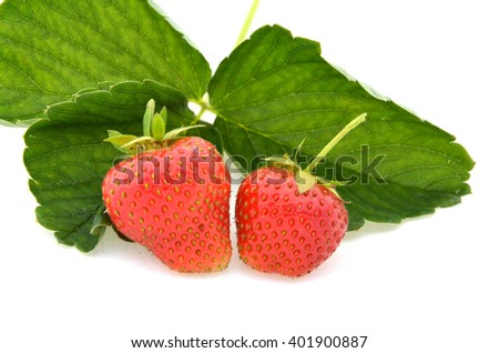 Two ripe strawberries with strawberry leaf isolated on white background - stock photo