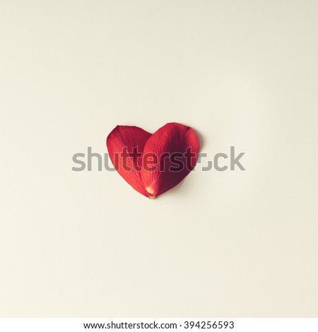 Two rose petals in a heart shape on white background. Flat lay - stock photo
