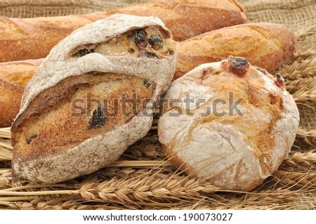 Two round loaves of bread leaning against two long baguettes on top of dried wheat. - stock photo