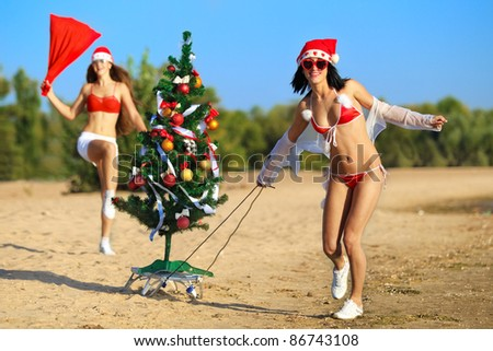 Two Sexy Santas with Christmas tree at the tropical beach - stock photo