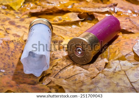 two shotgun shell that has been used on the fallen leaves - stock photo