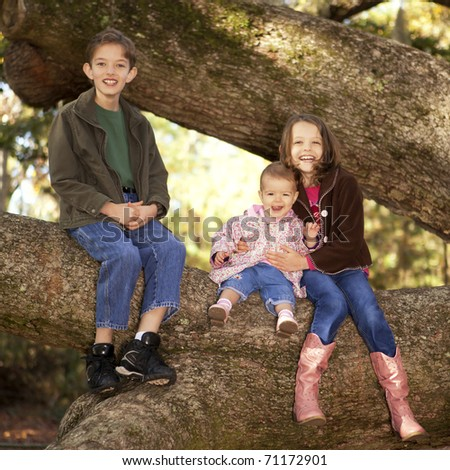 two sisters and brother sitting in a tree, portrait - stock photo