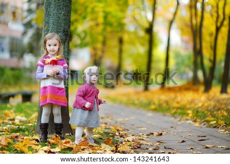 Two sisters on a beautiful day in autumn - stock photo