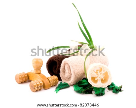 Two soft towels, wooden massager, fresh aloe and luff sponge on white background - stock photo