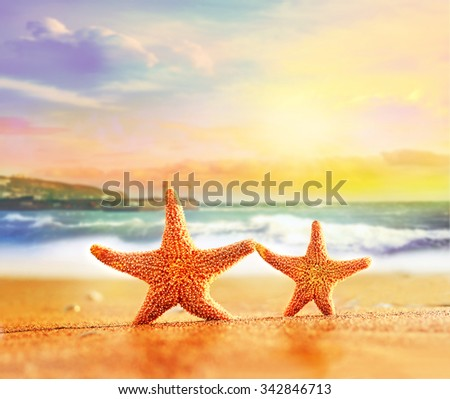 Two starfishes on a summer beach - stock photo