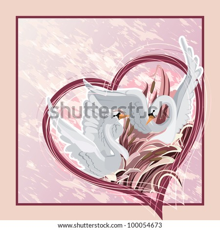 Two swans - stock photo