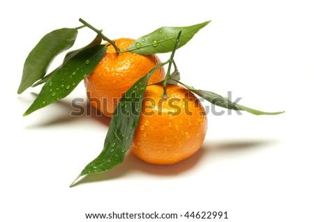 two tangerine - stock photo