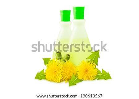 two translucent vial, yellow dandelions with green leaves and buds on a white background - stock photo