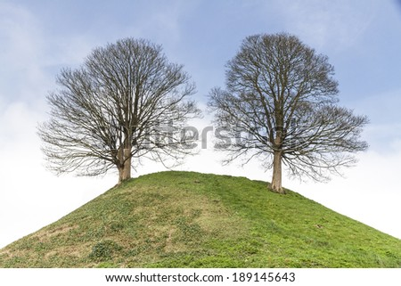 Two trees on a hill, Castle Mound, Oxford, England - stock photo