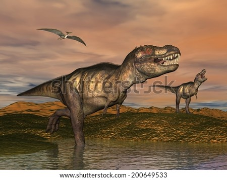 Two tyrannosaurus rex dinosaurs walking with pteranodon birds flying upon in desertic landscape by cloudy sunset - stock photo