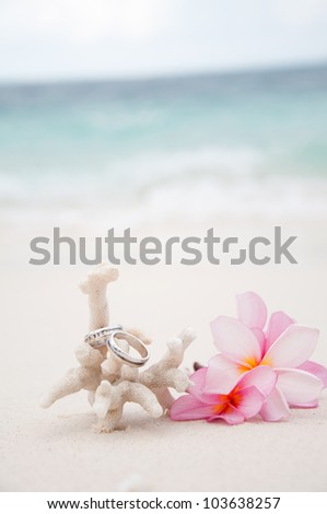 Two wedding rings on coral in front of the seaside - stock photo