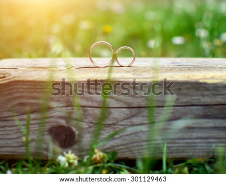 Two wedding rings on wood in garden. Love concept. - stock photo