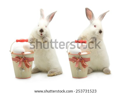 two white rabbit near a bucket with easter eggs - stock photo