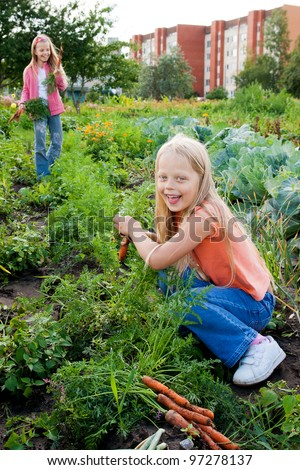 Two young girls working in vegetable garden - stock photo