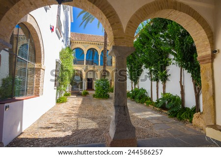 typical Andalusian courtyard decorated with flowers arches and columns in the city of Cordoba, Spain - stock photo