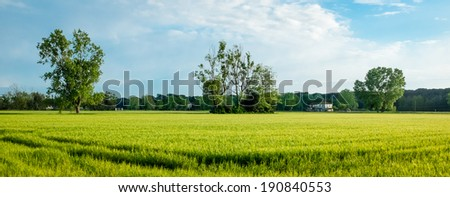Typical countryside landscape in beautiful Tuscany, Italy - stock photo
