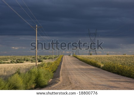 typical dirt road in eastern Colorado farmland lined by power lines and sunflowers, late summer with stormy sky - stock photo