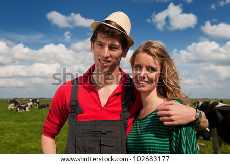 Typical Dutch landscape with farmers and black and white cows in the meadows - stock photo