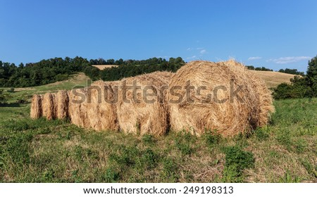 Typical Italian countryside landscape in Tuscany - stock photo