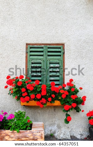 Typical Italian Window With Closed Wooden Shutters, Decorated With Fresh Flowers - stock photo