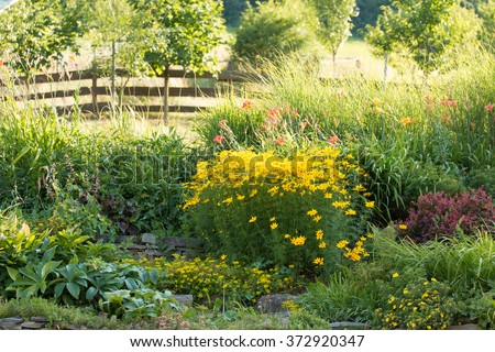 typical rural diversity garden in the summer with colorful coreopsis, hellebores, daylily and berberis with wooden fence in the background - stock photo