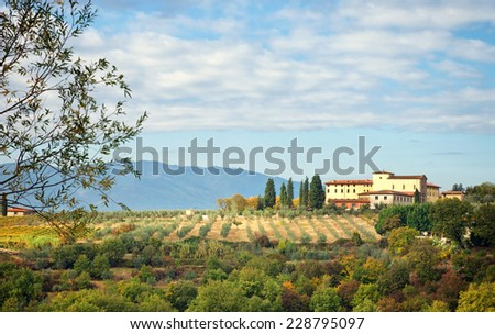 Typical Tuscan hill, with cypresses, olive trees and vineyards. Photographed in the province of Arezzo, Italy. - stock photo
