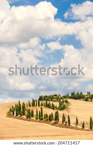 Typical Tuscan road surrounded by cypress trees and fields in summer, Italy - stock photo