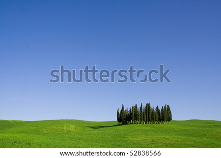 Typical Tuscany (Val d' Orcia) landscape with blue sky, rolled hills and many cypress. - stock photo