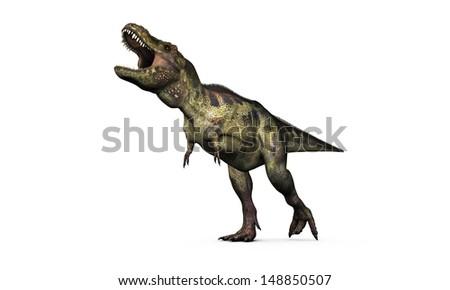 tyrannosaurus rex isolated on white background - stock photo