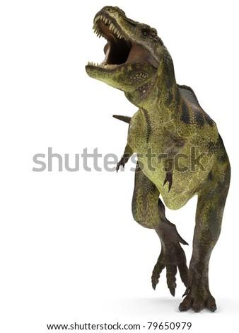 tyrannosaurus rex stand up - stock photo